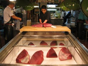 What does the future look like for the tuna used for sushi?